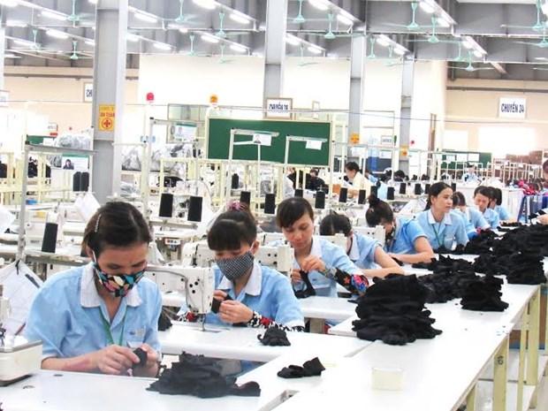 Nghe An cherche a attirer davantage d'investissements etrangers hinh anh 1