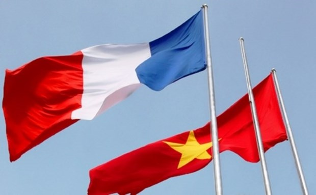 Message de felicitations a l'occasion du 45e anniversaire des relations Vietnam-France hinh anh 1