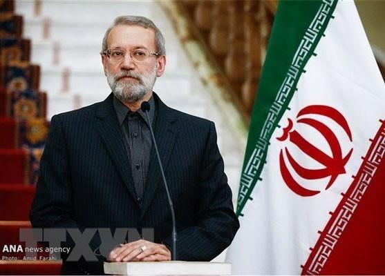 Le president de l'Assemblee consultative islamique d'Iran entame une visite au Vietnam hinh anh 1