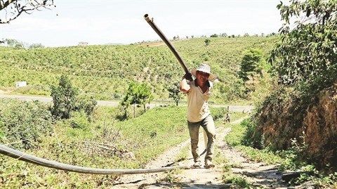 La secheresse sevit au Tay Nguyen, les agriculteurs sur le qui-vive hinh anh 1