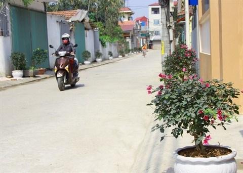 Nouvelle ruralite: Une region suburbaine de Hanoi en pleine mutation hinh anh 1