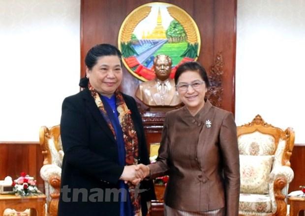 Le Vietnam et le Laos renforcent les relations entre leurs organes legislatifs hinh anh 1