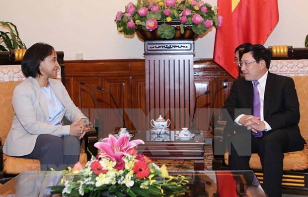 Le PM Pham Binh Minh plaide pour les liens de cooperation Vietnam-Maroc hinh anh 1