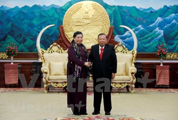 Des dirigeants laotiens recoivent une delegation de l'AN du Vietnam hinh anh 1