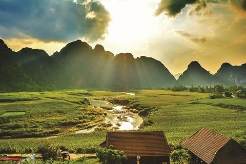 Rayons de soleil dans les salles obscures vietnamiennes hinh anh 2
