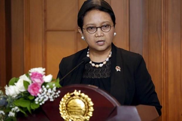 L'Indonesie satisfaite des resultats du 32eme Sommet de l'ASEAN hinh anh 1