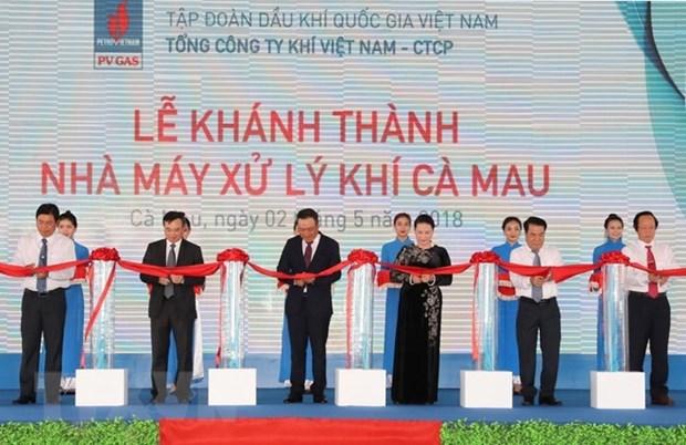 La presidente de l'AN inaugure l'usine de traitement de gaz de Ca Mau hinh anh 1