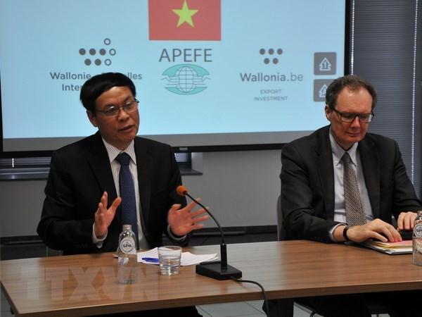 Le Vietnam plaide pour des liens accrus avec la Federation Wallonie-Bruxelles hinh anh 1