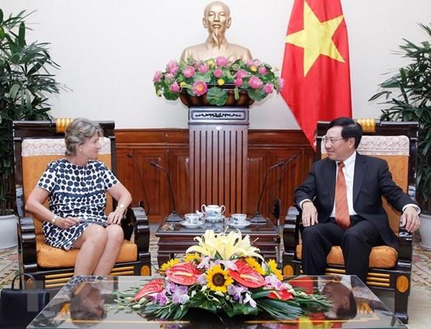 Le vice-PM Pham Binh Minh salue le partenariat strategique entre le Vietnam et l'Espagne hinh anh 1