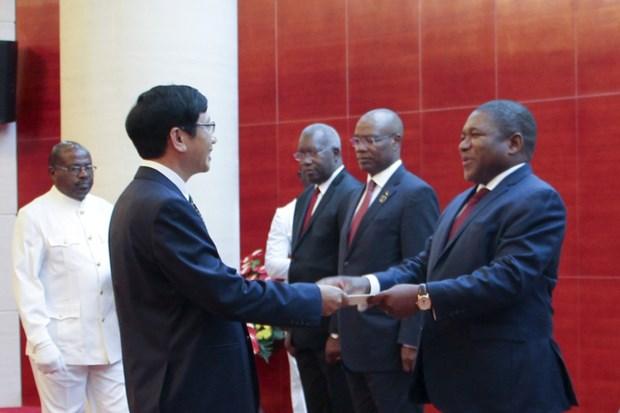 Le Mozambique souhaite promouvoir les relations avec le Vietnam hinh anh 1
