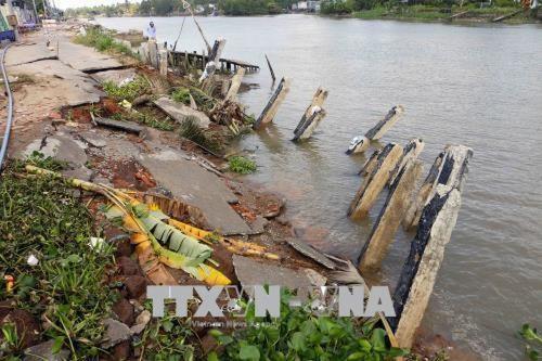 Traitement des glissements de terrain dans le Delta du Mekong hinh anh 1