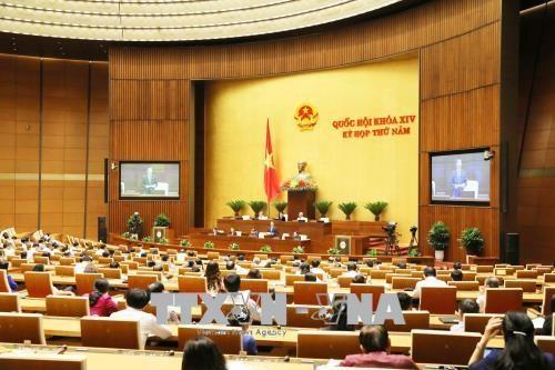 L'AN discute de l'amendement des lois sur la denonciation et la concurrence hinh anh 1