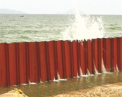 Reboisement des mangroves pour lutter contre l'avancee de la mer hinh anh 2