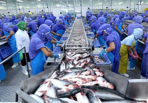 L'aquaculture vise une production et une exportation durables hinh anh 1