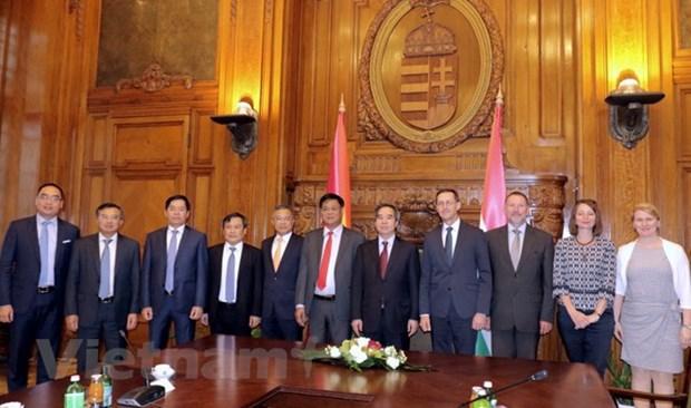 Le Vietnam et la Hongrie intensifient leur cooperation multiforme hinh anh 1