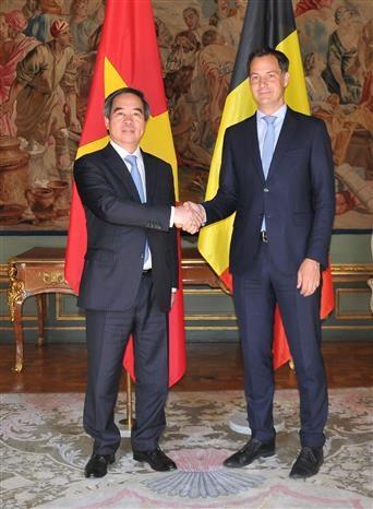Le Vietnam privilegie la cooperation economique avec la Belgique et l'UE hinh anh 1