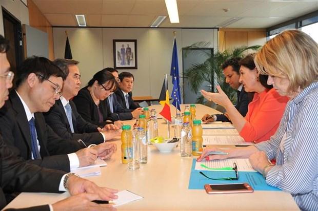 Le Vietnam privilegie la cooperation economique avec la Belgique et l'UE hinh anh 3
