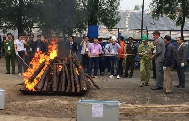 Renforcement de la lutte contre le commerce illegal d'especes sauvages hinh anh 1