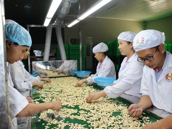 Agriculture: regler les difficultes pour parvenir a une valeur d'exportations de 40 milliards d'USD hinh anh 1
