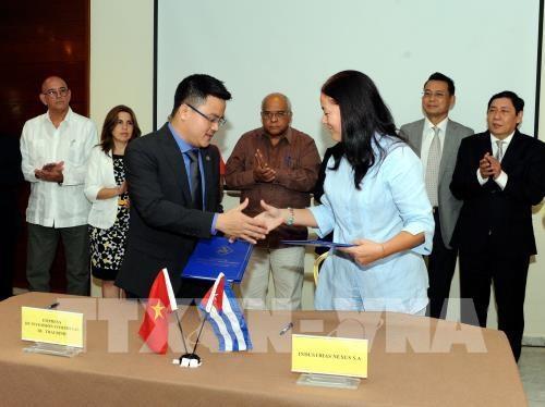 Vietnam-Cuba : des entreprises signent des accords commerciaux hinh anh 1
