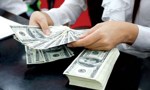 Deux milliards de dollars de devises transferees a HCM-Ville en cinq mois hinh anh 1
