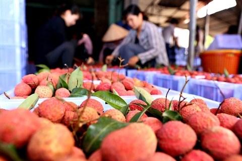 Tet Doan Ngo, la Fete du Double Cinq, dans la culture vietnamienne hinh anh 2