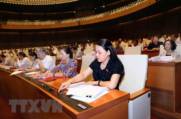 L'AN promulgue le programme d'elaboration de la loi et de l'ordonnance de 2019 hinh anh 1