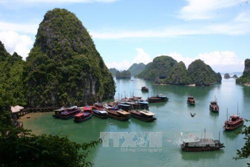 Promotion d'une economie et d'un tourisme verts et durables hinh anh 1