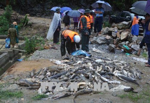 La Croix-Rouge du Vietnam accorde une aide aux victimes des crues hinh anh 1