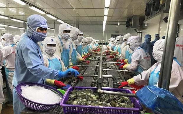 Cette annee, le secteur agricole s'oriente vers l'objectif de 40 milliards de dollars d'exportation hinh anh 1