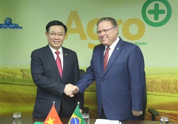 Le Vietnam et le Bresil dynamisent leur partenariat integral hinh anh 4