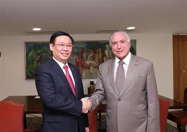 Le Vietnam et le Bresil dynamisent leur partenariat integral hinh anh 1