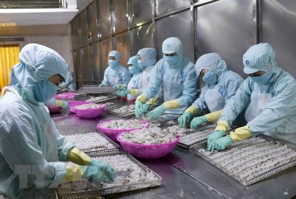 Exportations de produits aquatiques en forte hausse au 1er semestre hinh anh 1