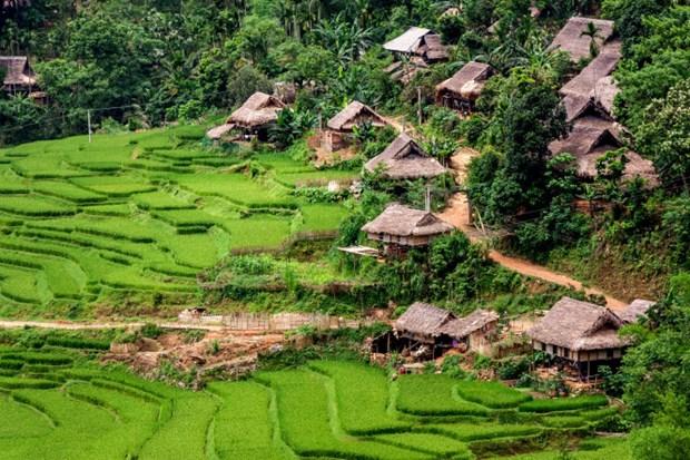 Homestay aux alentours de la Reserve nationale de Pu Luong hinh anh 3