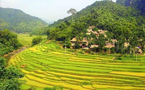 Homestay aux alentours de la Reserve nationale de Pu Luong hinh anh 1