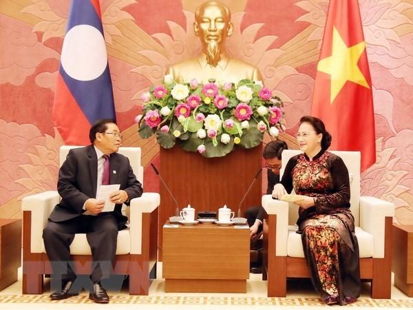 Le Vietnam veut renforcer ses liens legislatifs avec le Laos hinh anh 1