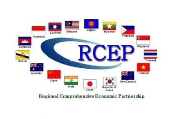 RCEP : l'Inde sous la pression de Singapour et de l'Indonesie hinh anh 1