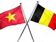 Message de felicitations aux dirigeants belges a l'occasion de la Fete nationale belge hinh anh 1