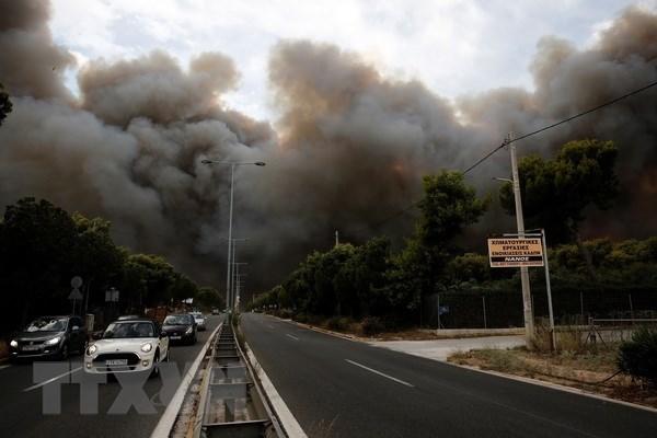 Incendies de foret en Grece: message de sympathie au president grec Prokopis Pavlopoulos hinh anh 1