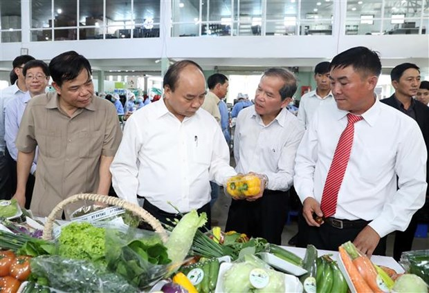 Le PM decore le service de propagande de la 5e zone militaire hinh anh 2