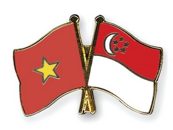 Ho Chi Minh-Ville celebre les 45 ans des relations diplomatiques Vietnam-Singapour hinh anh 1