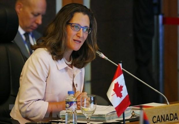 Le Canada souhaite renforcer ses relations avec l'ASEAN hinh anh 1