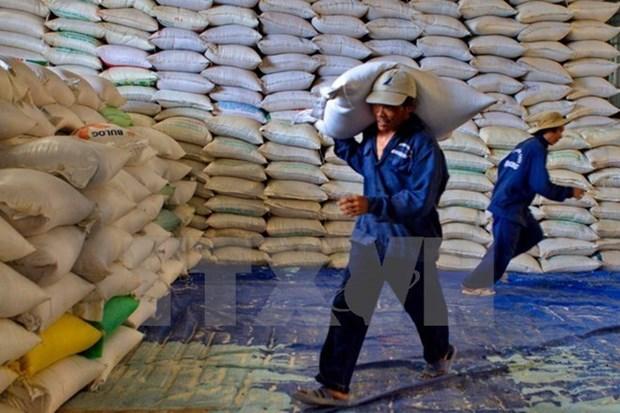 Protection des forets : Thanh Hoa recevra plus de 50.000 tonnes de riz hinh anh 1
