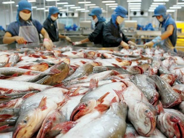 Sept mois : le pays gagne 4,63 milliards de dollars des exportations des produits aquatiques hinh anh 1