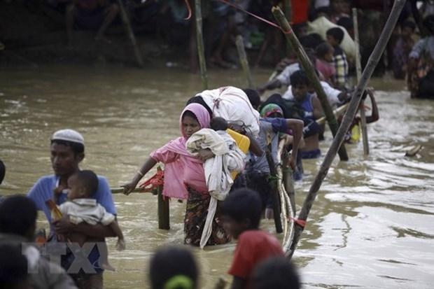 Le Myanmar et le Japon discutent de la crise des Rohingyas hinh anh 1