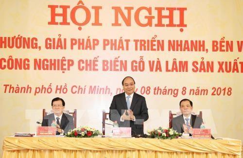 Pour faire de la sylviculture un secteur economique majeur hinh anh 1