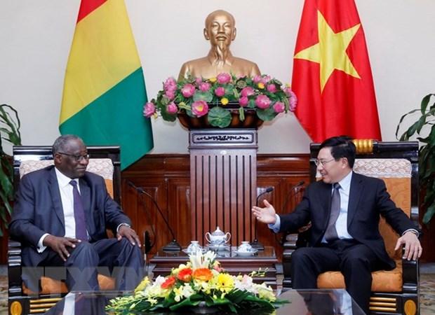 Le Vietnam et la Guinee cherchent a developper leur cooperation hinh anh 1