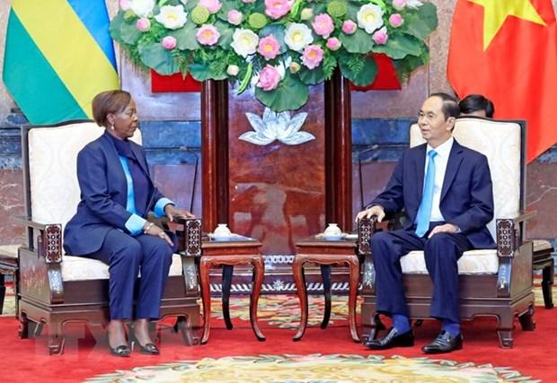 Le Vietnam souhaite approfondir ses relations avec le Rwanda et la Guinee hinh anh 1