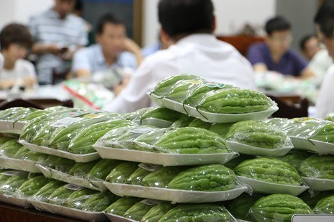 Ho Chi Minh-Ville : Hausse de la superficie de la culture maraichere labelisee hinh anh 1