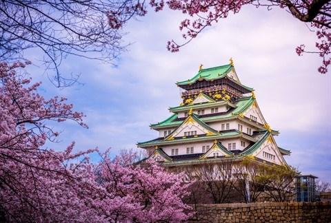 Vietjet Air: 200.000 billets a prix casses pour le Japon, la R. de Coree et Taiwan hinh anh 2